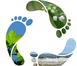 Thematic Experiential Learning – Reduce Carbon Footprint in Daily Life